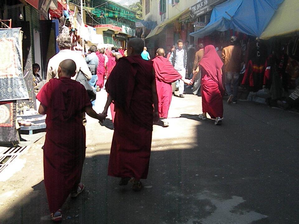 Monaci tibetani foto nord india