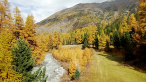 BLOG: TRENINO DEL BERNINA in AUTUNNO
