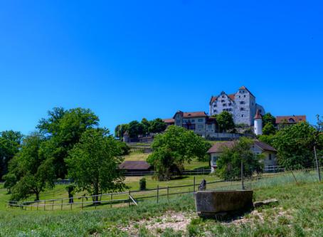 Das Schloss Wildegg