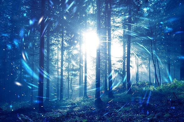 mystic.forest.blue.jpeg