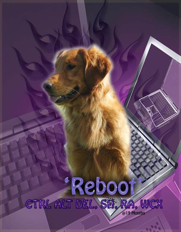 RebootWeb