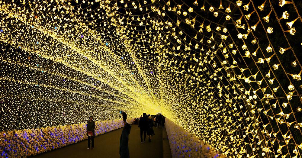 Nabana No Sato (Winter Illumination)