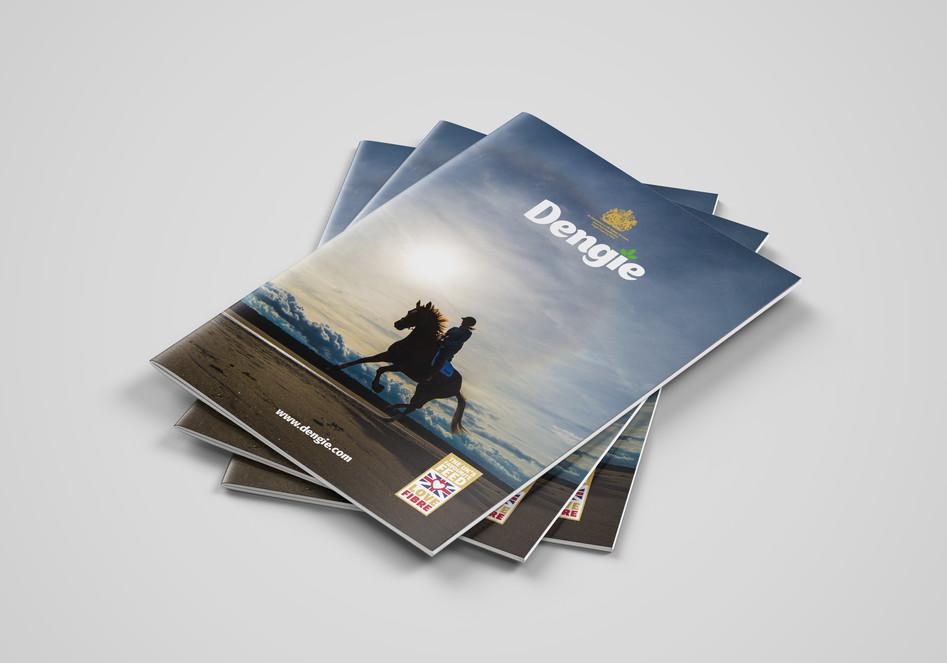 DENGIE_COVERS.jpg