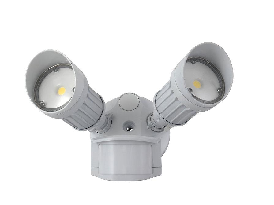LED Security Light-Tw Head.jpg