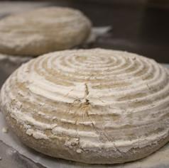 RISE Bread Photo Shoot 3 Kimberly O'Blenes-7 copy.jpg
