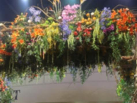 flower%20show%204_edited.jpg