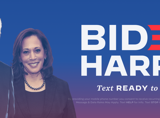 How to Help Joe Biden and Kamala Harris Win in November!