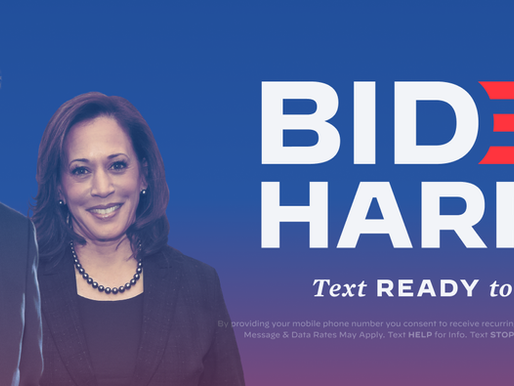 How to Help Joe Biden and Kamala Harris Win in November!
