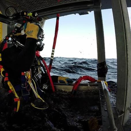 Diver Leaves Surface.jpg.jpg
