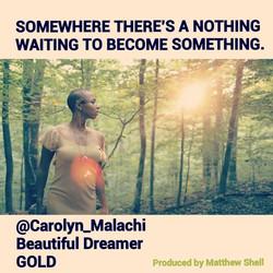 Art - Carolyn Malachi - Beautiful Dreame