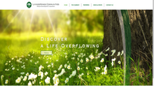 The New Livingsprings Website