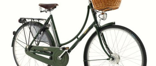 PASHLEY PRINCESS SOVEREIGN 5 SPEED GREEN