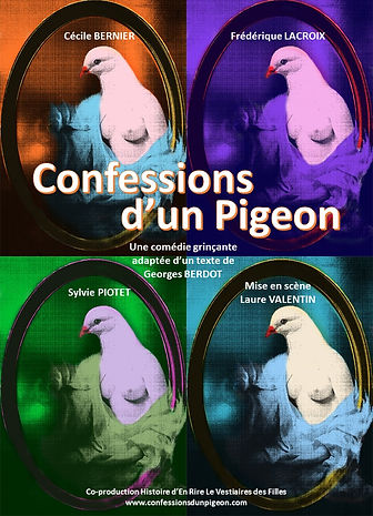 1 Pigeons sans bandeau.jpg