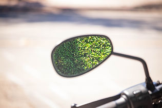 Sideview Mirror (1 of 1).jpg