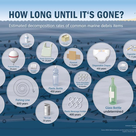 How Plastic Destroys Our Oceans ! What can you do?