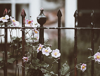 Fence with Flowers