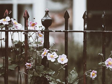 Wrought Iron Fence Installatio Company Atlanta Ga.