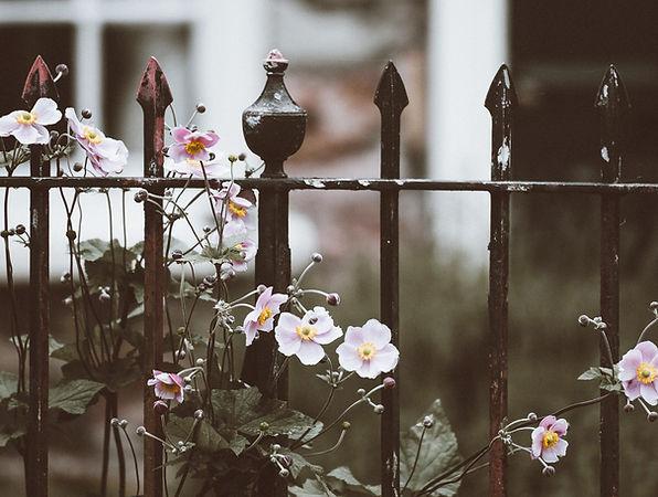 Recinzione con fiori