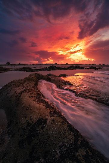 Last Light Marineland (Paul Farace).jpg