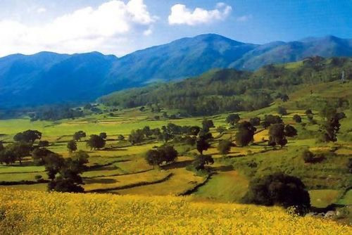 Araku Valley | Offbeat places in Andhra Pradesh | Hill stations in Andhra Pradesh