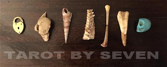 tarot by seven bone casting bones 3.png