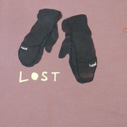 Lost Gloves of Cambridge