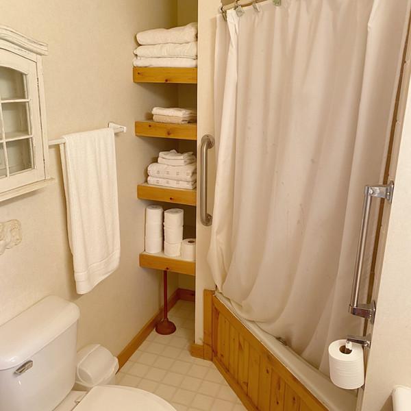 Master bedroom shower & bath