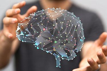 recherche-neurosciences-avanceon-compren