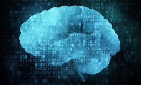 brain, cervello