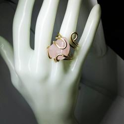 טבעת צבייה