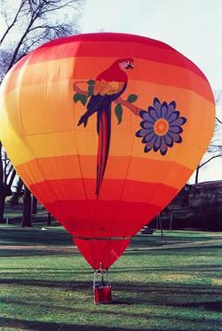 Sub-tropical Balloon