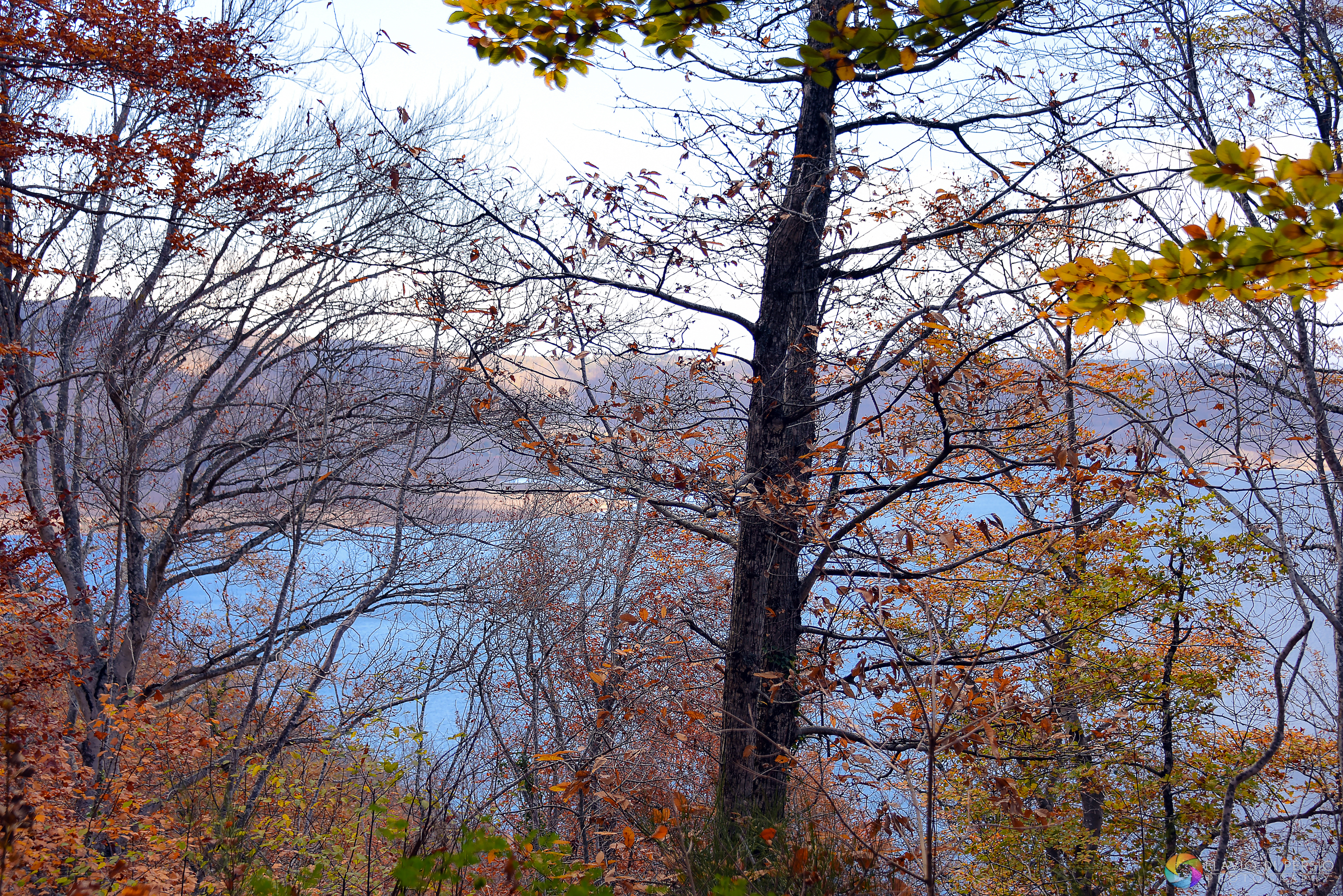 viste del lago di Vico