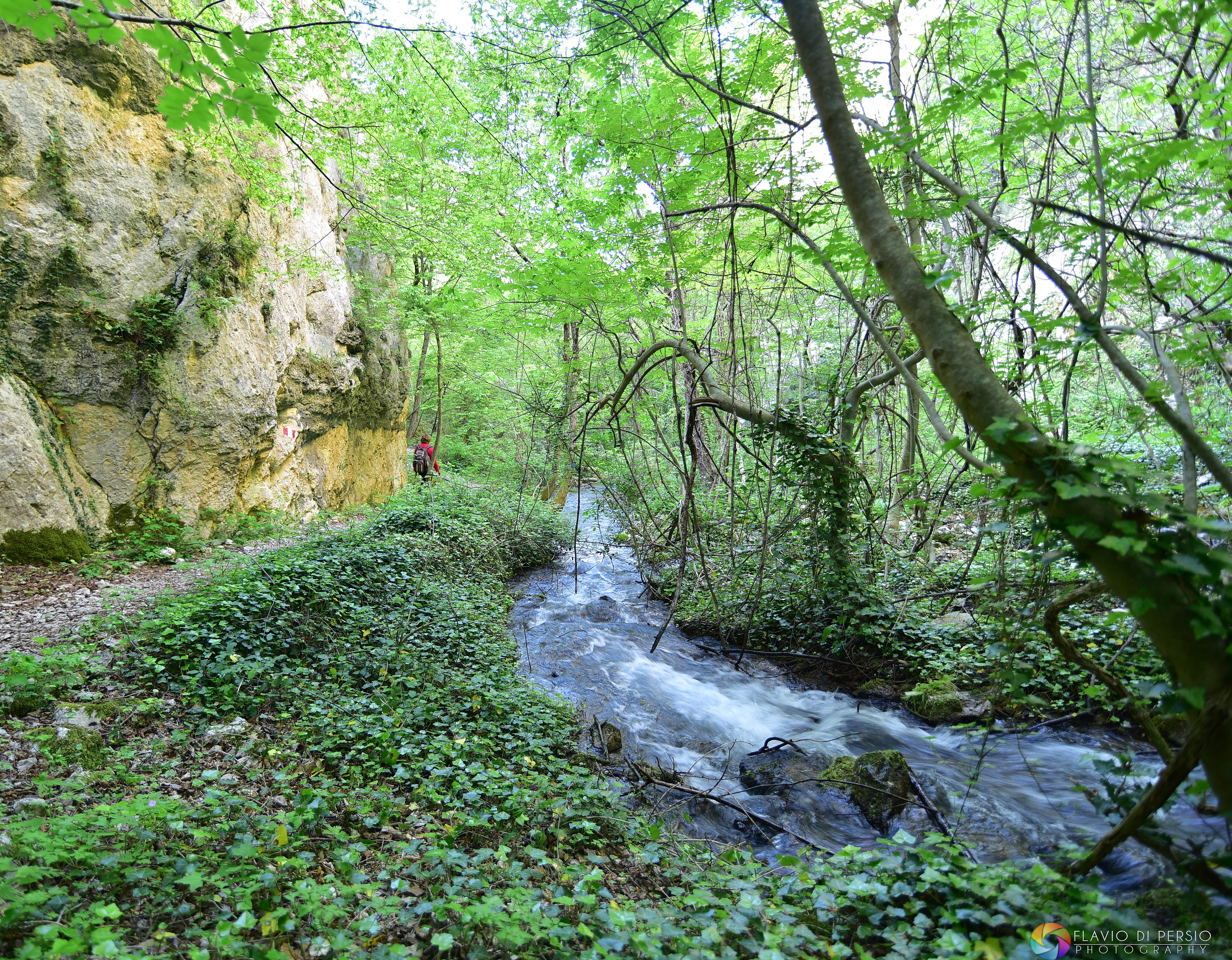 il torrente lungo le Gole