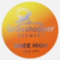 knee high pump clip