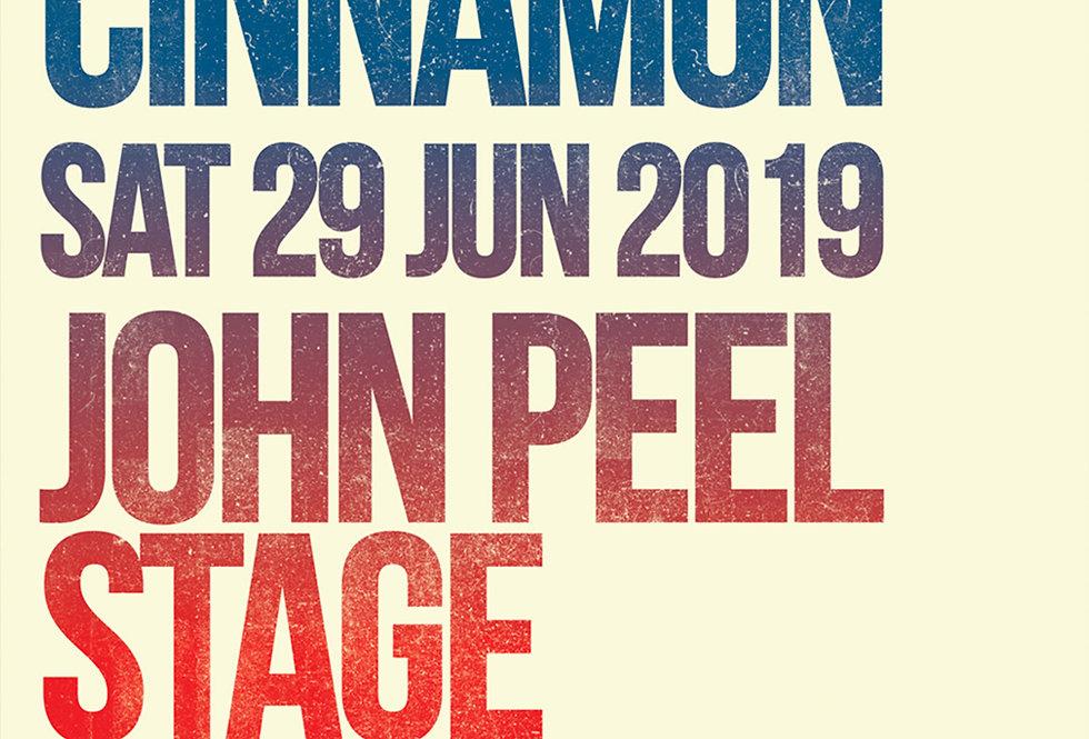 Gerry Cinnamon John Peel Glastonbury Art Print