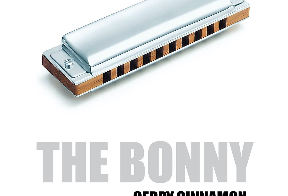 Gerry Cinnamon Poster Art Print The Bonny Album