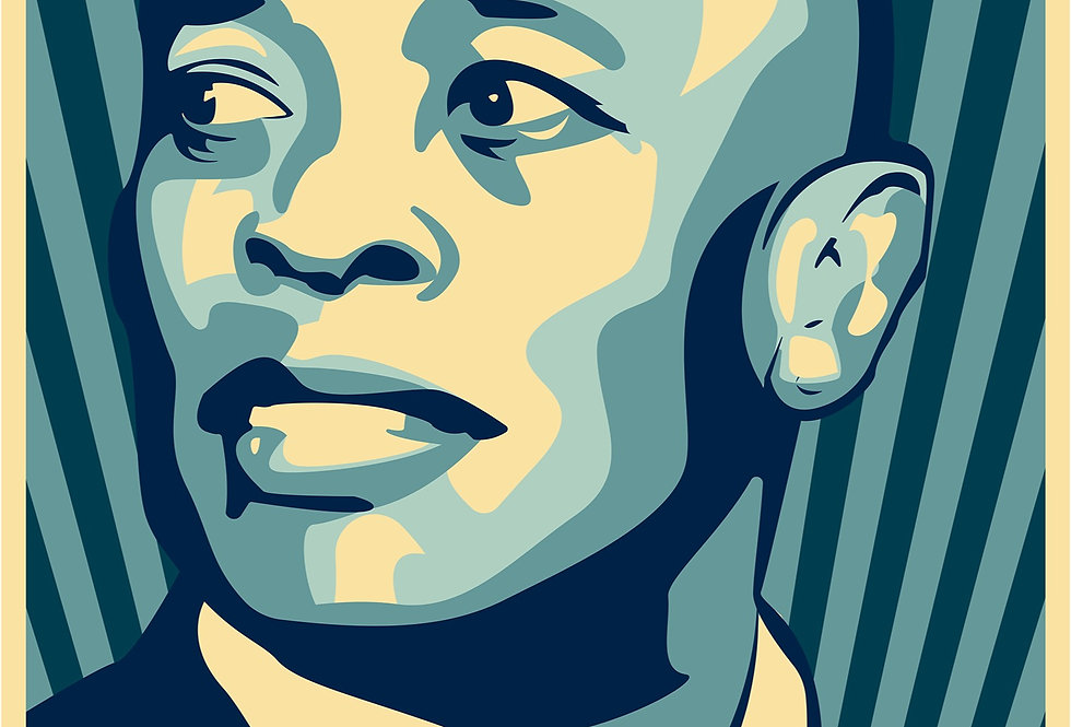 Obey Dr Dre The Chronic Poster Art Print 2001