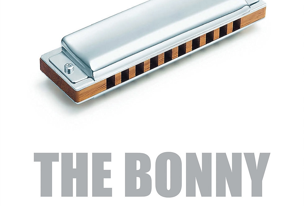Gerry Cinnamon Harmonica The Bonny Swiss Poster Art Print