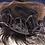 Thumbnail: Silver Mermaid
