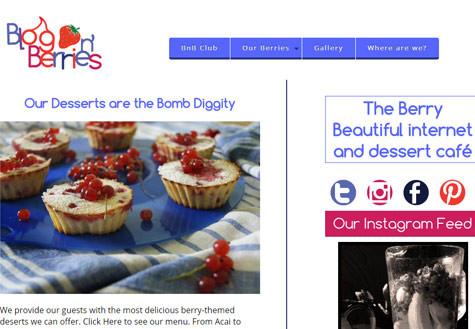 Blog n' Berries