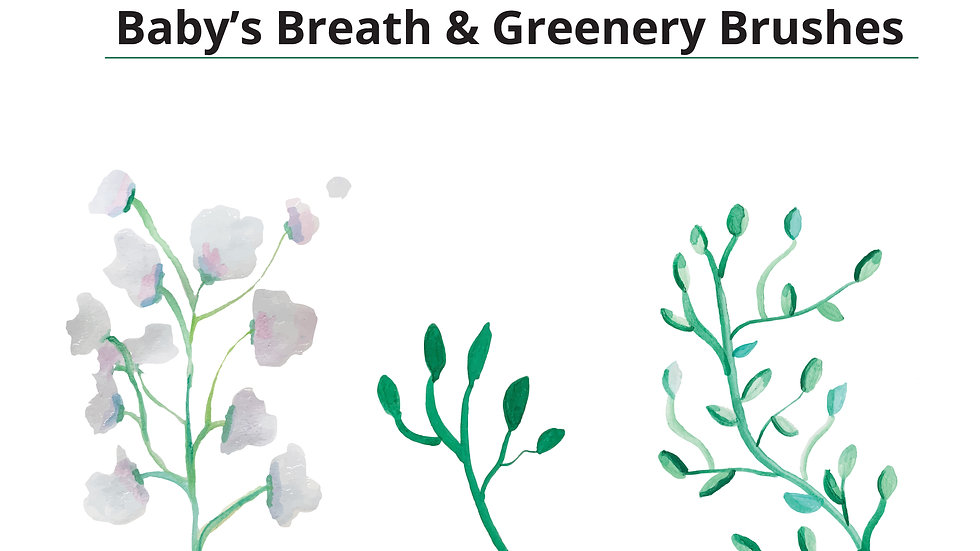 Baby's Breath Photoshop Brushes