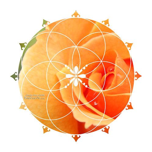Tangerine Rose Seed of Life Crystal Grid