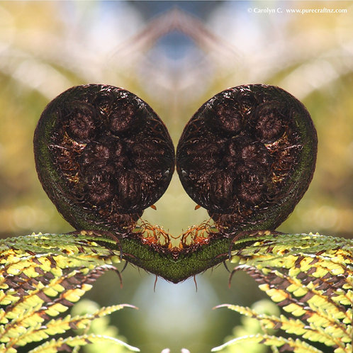 """Ponga """"Heart of the Forest"""" - Mirror Work"""