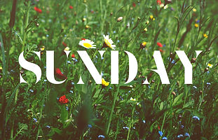 sunday-wide-4.jpg