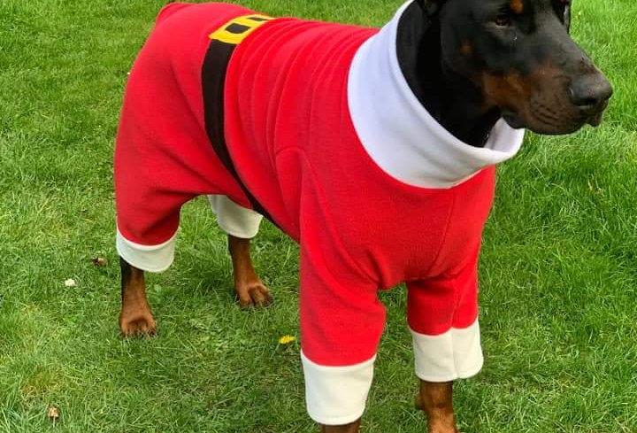 Made to Measure Santa/Elf Onesies