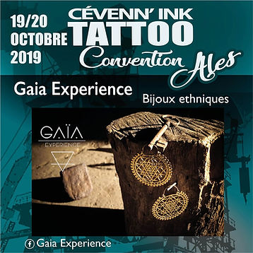 GaiaExperience.jpg