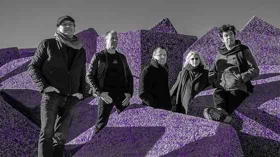 Site Purple 2.jpg