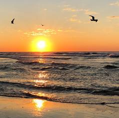 """Sunrise at Stone Harbor"""