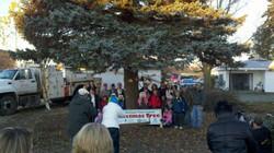 2011 State Christmas Tree