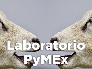 28/08 | #Taller - Laboratorio PyMEx: Estrategias de diseño e imagen para exportar